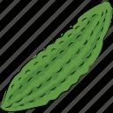 bitter gourd, bitter melon, diet, food, nutrition, vegetable icon