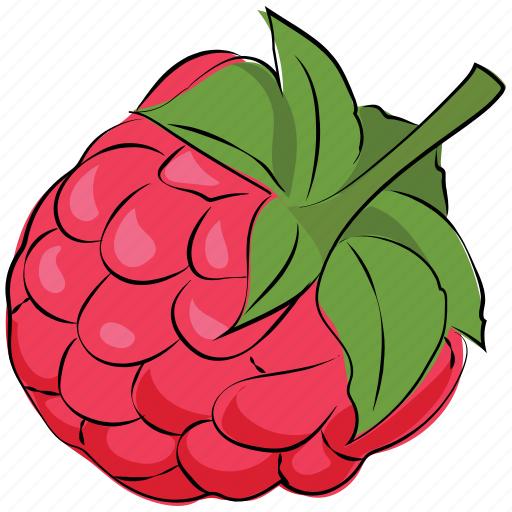 berry, berry fruit, fruit, raspberry, red icon