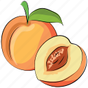 food, apricot, fruit, peach, healthy food icon