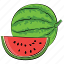 cantaloupe, food, fruit, watermelon, watermelon slice icon