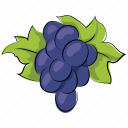 bunch of grapes, fruit, gather grapes, grapes, wine grapes icon