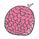 eat, food, fruit, litchi, lychee icon