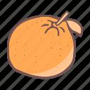 eat, food, fruit, orange icon