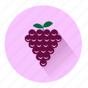 dessert, drink, fresh, fruit, grapes, graphs, sweet icon