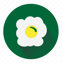 chicken, egg, green, omlet, white, yellow icon