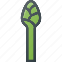asparagus, food, vegetable icon