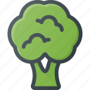 broccoli, food, health, healthy, vegetable icon