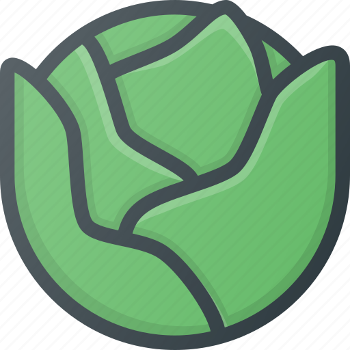 cabbage, food, health, healthy, vegetable icon