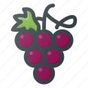 food, fruit, grape, health, healthy icon