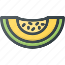 food, fruit, health, healthy, honeymelon, melon icon