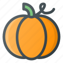 food, health, healthy, pumpkin, thanksgivving, vegetable icon
