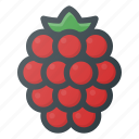 food, fruit, health, healthy, raspberry icon