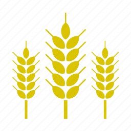 food, nature, vegetable, wheat icon