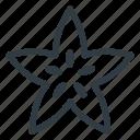 star, food, starfiut, healthy, health, friut, carambola icon
