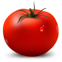 tomato, vegetable icon