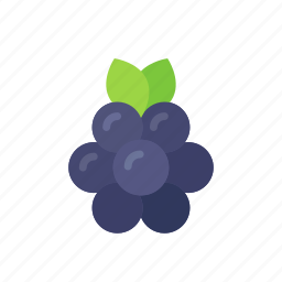 berry, blackberries, blackberry, colour, food, fruit icon