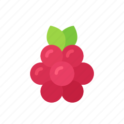 berry, colour, food, fruit, raspberries, raspberry, red icon