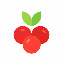 colour, cranberries, cranberry, currant, food, fruit, red icon
