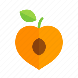 apricot, colour, food, fruit, health, orange, peach icon
