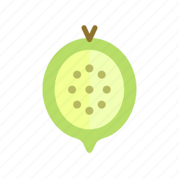 colour, food, fruit, gooseberry, green, health icon