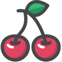 organic, food, cherry, vegetarian, vegan, fruit icon