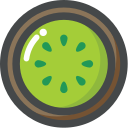 kiwi, organic, food, vegetarian, vegan, fruit icon
