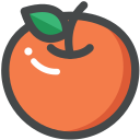 food, fruit, orange, organic, vegan, vegetarian icon