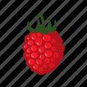 food, fruit, healthy, kitchen, raspberry, restaurant, sweet icon