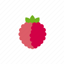 berry, food, fruit, leaves, raspberry, sweet icon