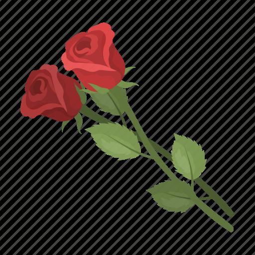 couple, flower, rose icon