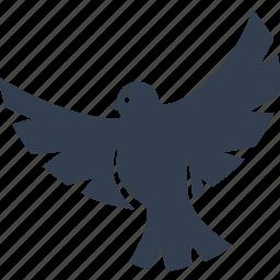 dove, funeral, soul icon