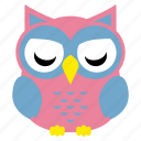 animal, bird, cute owl, fowl, funny owl, owl