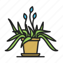 flower, flower pot, plant icon