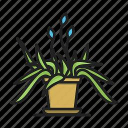 flower, flower pot, plant icon