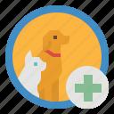 anima, clinic, doctor, hospital, veterinarians