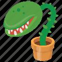 man eater plant, pitcher plant, plants vs zombie, zombie cactus, zombie plant icon