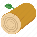 cut tree, log, timber log, tree, wood icon