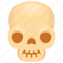 human skull, skull, skull anatomy, skull bones, skull cartoon icon