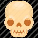 human skull, skull, skull anatomy, skull bones, skull cartoon