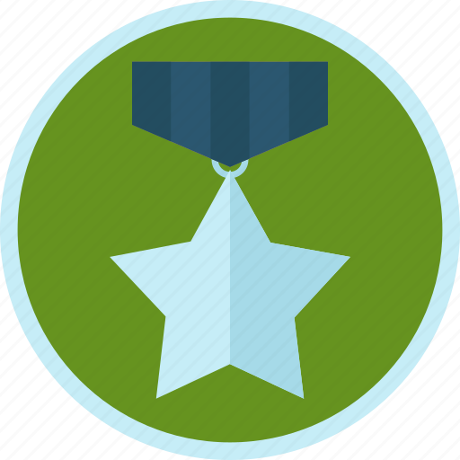achievement, badge, medal, silver, star, trophy icon