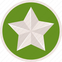 achievement, badge, bronze, medal, prize, star, trophy, winner icon