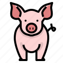 animal, farm, husbandry, pig, pork icon