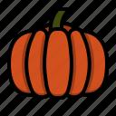 agriculture, farm, gardening, pumpkin, vegeteble