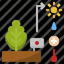 fertilizaer, gardening, humidity, light, monitoring, plant, temperature