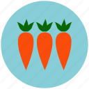 carrot, carrots, crop, food, garden, healthy, vegetable icon