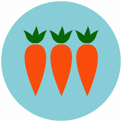 carrot, carrots, crop, food, garden, healthy, vegetable icon