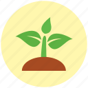 crop, environment, forest, green, nature, plant, plants icon