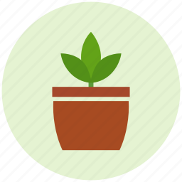 crop, garden, growth, grwing, plant, plant pot icon