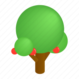 decoration, foliage, isometric, natural, park, street, tree icon