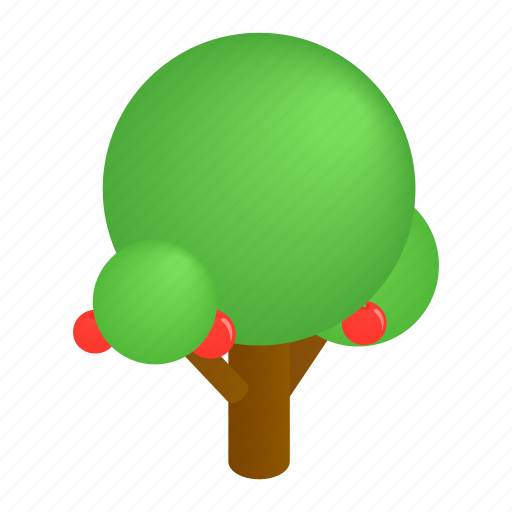 Decoration, foliage, isometric, natural, park, street, tree icon - Download on Iconfinder